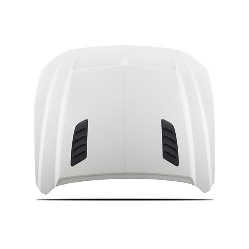 Mustang Cervinis Ram Air Hood (15-17)