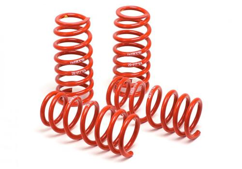 79-04 Mustang H&R Race Springs