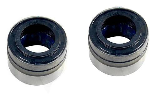 Mustang Rear Axle Repair Bearing And Seal Kit (79-04)