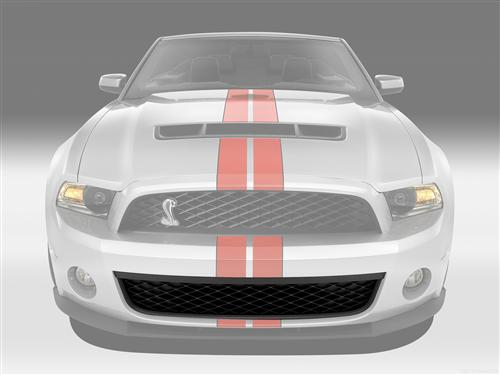 Mustang GT500 Front Lower Grille (10-12) 3Z17K945AA