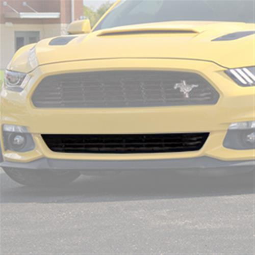 Mustang California Special Lower Grille (15-16) - 2016 california special lower grille