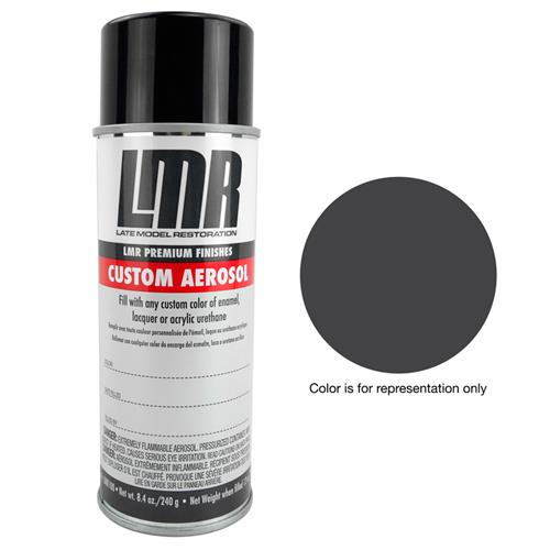 Mustang Vinyl Interior Paint Charcoal Black (05-14)