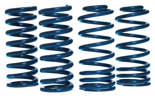 Steeda Mustang Sport Lowering Springs Kit (79-04) 555-8200