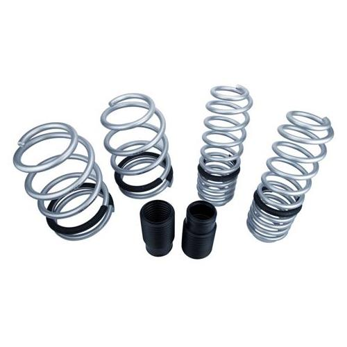 SVE Mustang Progressive Rate Lowering Springs Silver (05-14)
