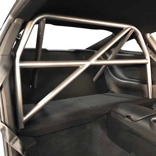 Watson Racing Mustang 4 Point Bolt-In Roll Cage  - Gray (15-18) WR-15-BOLTINCAGE